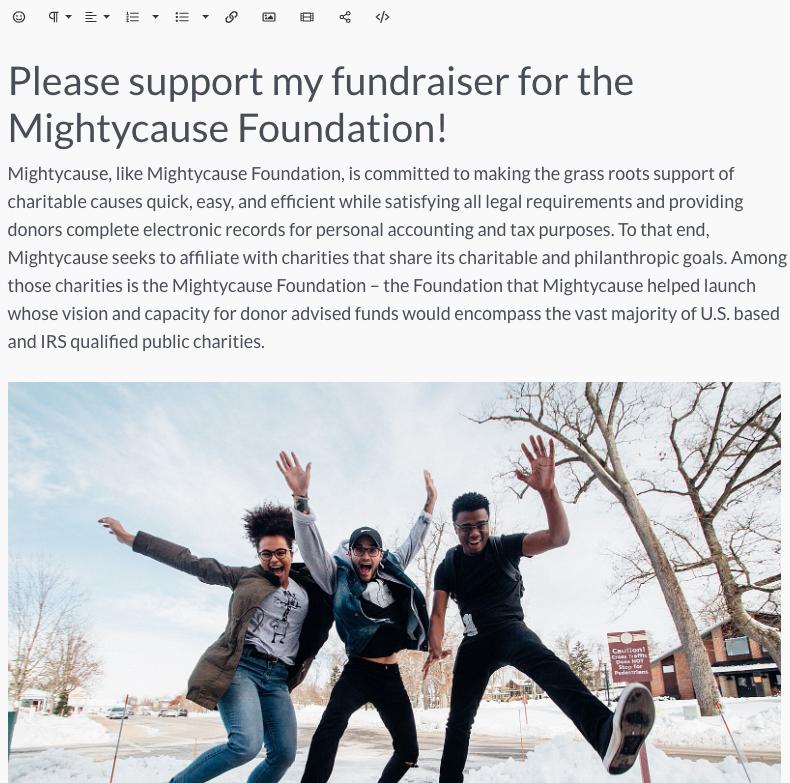 fundraiser template screenshot