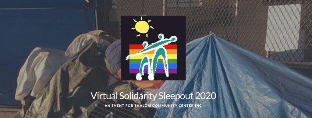 summer fundraising ideas: screenshot of virtual sleep out