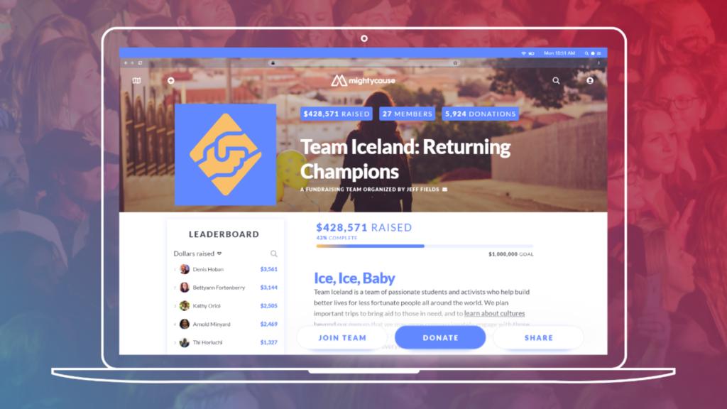 summer fundraising: screenshot of team page