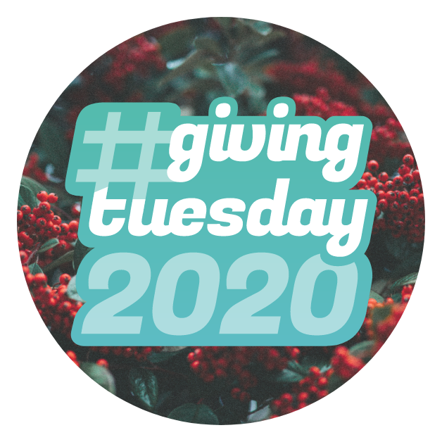 #givingtuesday winter circle graphic