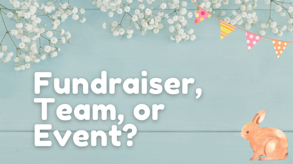 """spring fundraiser ideas: graphic that reads """"fundraiser, team or event?"""""""